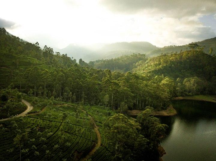 Sri Lanka-237