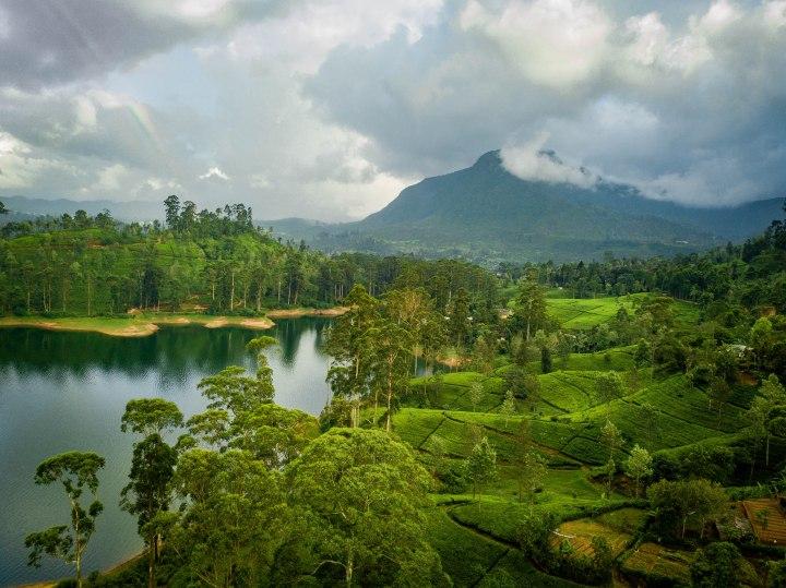 Sri Lanka-240